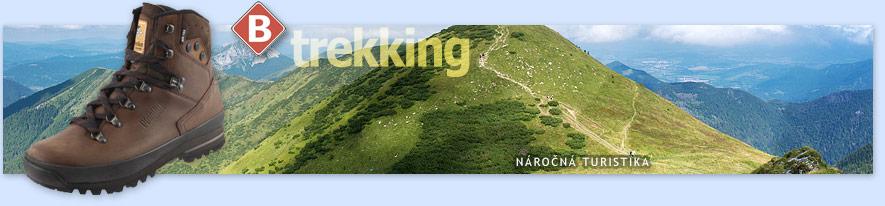 Aktivity  typická trekkingová obuv pro nejširší skupinu turistů 381239f040